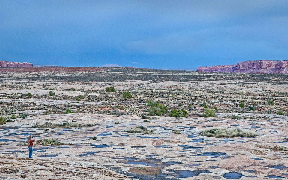 Letter to America Responds to Bears Ears Monument Designation